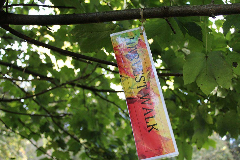 Harvest Walk For Rahab Img 4251 Small